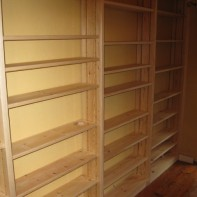 Floor to ceiling Bookcase southampton 3