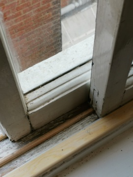 window replaced in southampton 3